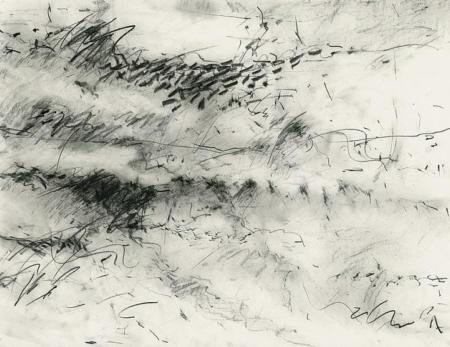 Improvisationen über Seelandschaft III, 2008, Graphit auf Papier,  50 x 65 cm